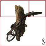 bicicletta-alberata