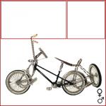 bicicletta-cingolata-a-tre-ruote