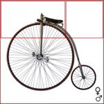bicicletta-roadster